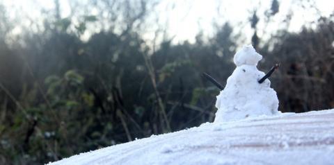 Santa Catarina pode registrar neve a partir de quinta, aponta meteorologista